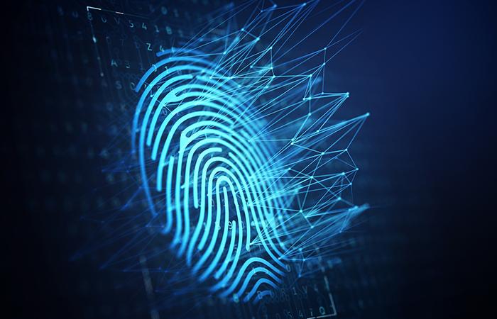 Heidame pilgu digitaalsesse kriminalistikasse